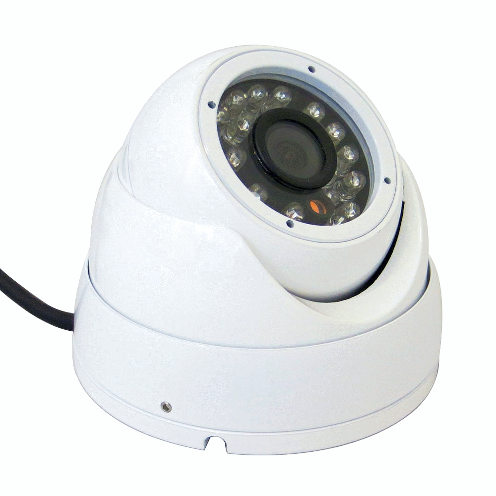 Outdoor Vandal Resistant Eyeball IR Dome HD 1.3MP Sensor 1200TVL